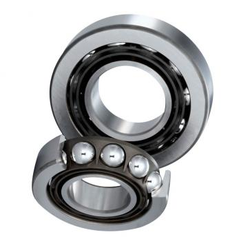 SKF Bearing 6205 6206 Zz 2RS Seal Type Original Deep Groove Ball Bearing 6207 6208 2z Price