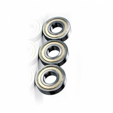 Deep Groove Ball Bearing 6202 6203 6204 6205 for Motor Rotor